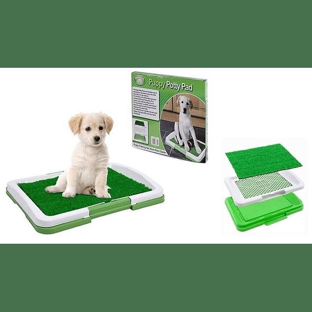Baño Ecológico para perros y mascotas. Puppy Potty Pad/ pequeños