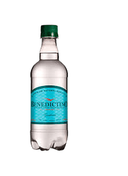 AGUA MINERAL BENEDICTINO CON GAS 500 ML