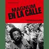 LIBRO: MAGNUM EN LA CALLE. STEPHEN MCLAREN (Tapa dura)