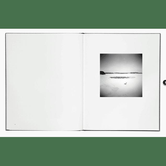 LIBRO: DES OISEAUX - MICHAEL KENNA  (Inglés)