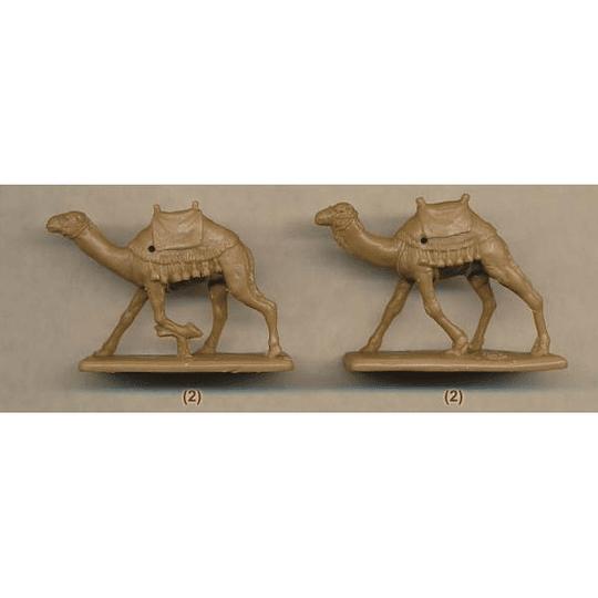 British Camel Corps Set 165 1:72