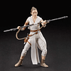 Rey & D-O W22 The Black Series 6