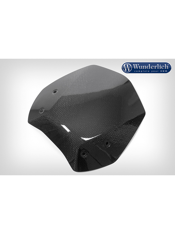 Windschield R 1200 R LC
