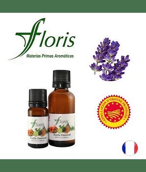 LAVANDA FINA o VERDADERA Certificada AOC - Lavandula angustifolia