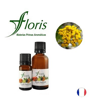 SIEMPREVIVA - Helichrysum italicum
