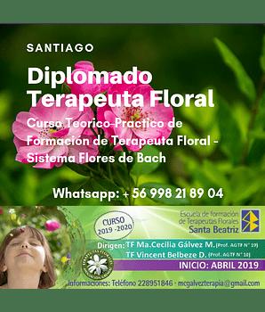 CURSO COMPLETO - Diplomado Formación Terapeuta Floral - Sistema Flores de Bach / SANTIAGO 2019