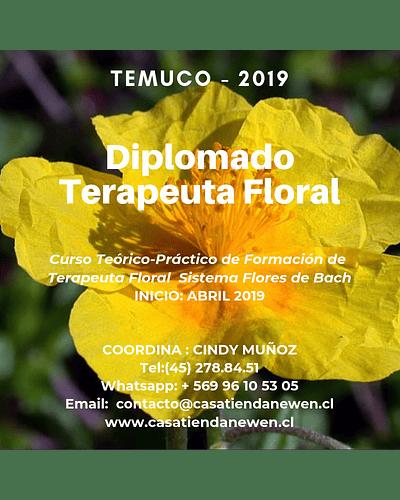 MATRICULA - Diplomado Formación Terapeuta Floral - Sistema Flores de Bach / TEMUCO 2019