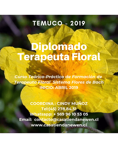 CURSO COMPLETO - Diplomado Formación Terapeuta Floral - Sistema Flores de Bach / TEMUCO 2019