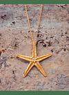 Colar Estrela do Mar (L)