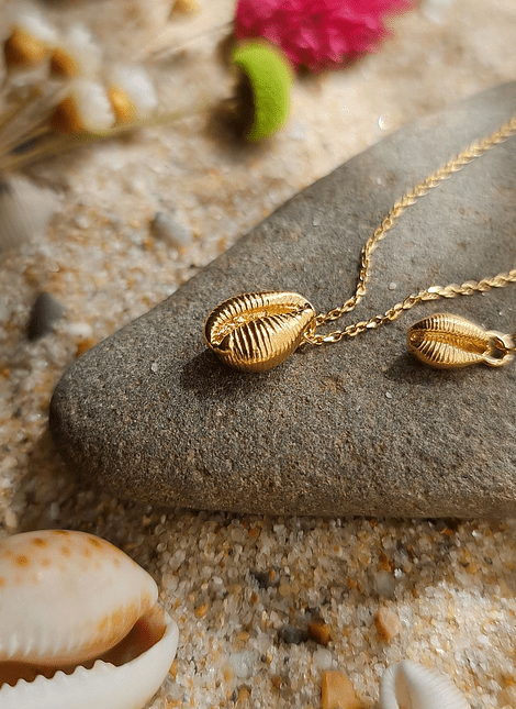 Cowry Shell, Necklace