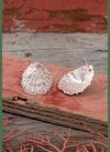 Limpet Earrings
