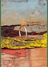 Anel Coral Rotativo