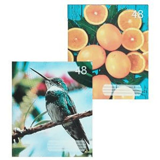 Тетрадь в линейку А5/48 листов