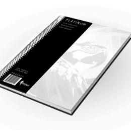 Kantorgrāmata ar spirāli PLATINUM A4/120 lpp. rūtiņu
