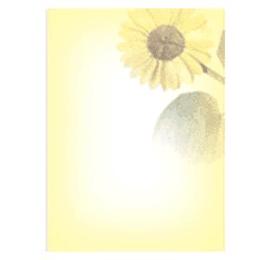 Бумага для писем ПОДСОЛНУХ A4/20 листов