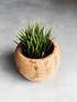 AGRA Vase