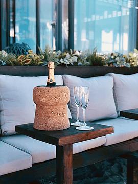 Frapé Champagner Stopper