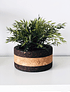 Black / Natural Tradition Vase III