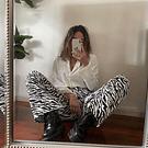 Flare Zebra