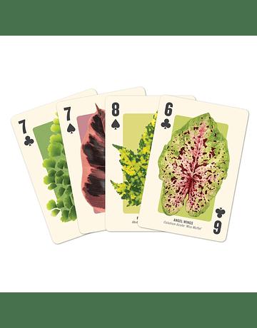 Juego de cartas Houseplant Jungle 2 mazos