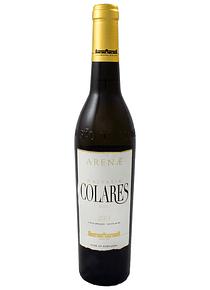 Colares Malvasia 2013