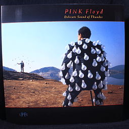 Pink Floyd ‎– Delicate Sound Of Thunder (Reed.)