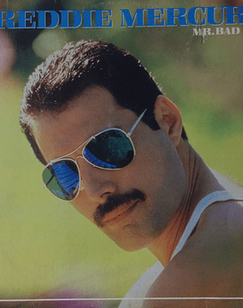 Freddie Mercury (Queen) ‎– Mr. Bad Guy