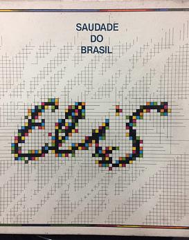 Elis Regina – Saudade Do Brasil (2xLPs BOX + libreto)