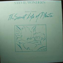 Stevie Wonder – Journey Through The Secret Life Of Plants - Ed Japón