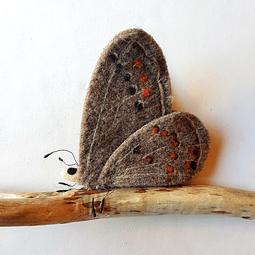Fieltro Mariposa Gris
