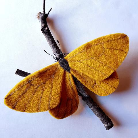 Fieltro Mariposa Amarilla