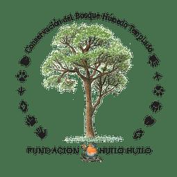 Caja De Alimentos Para Neltume Y Puerto Fuy
