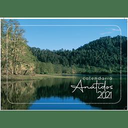 Calendario 2021 de Patos, Cisnes y Gansos