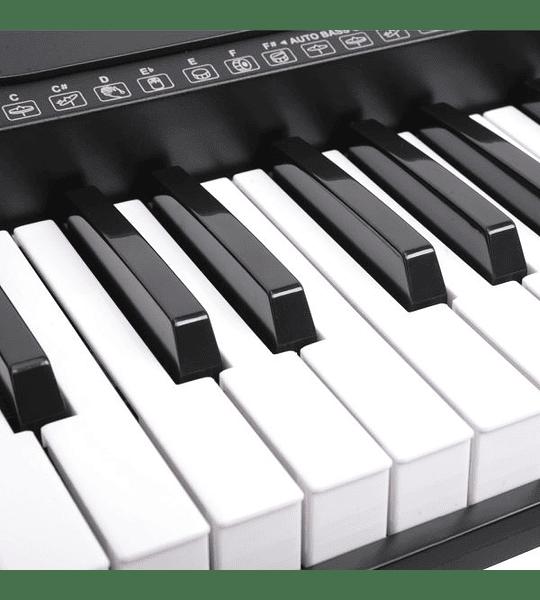 Teclado 61 notas TON-600