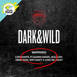 BTS - DARK AND WILD
