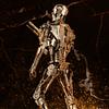 The Terminator Endoesquelto Figura para armar Premium