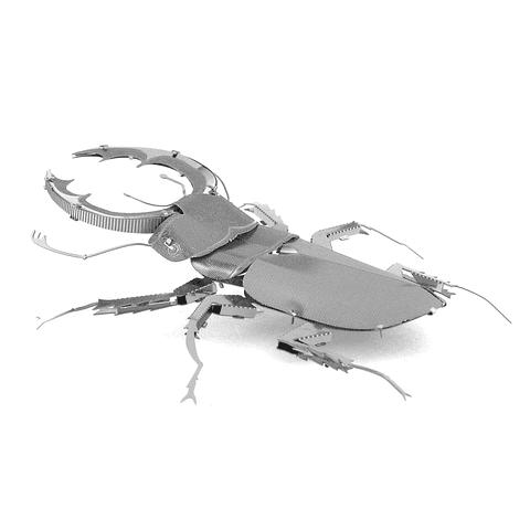 Modelo de Escarabajo Ciervo para armar