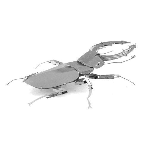 Escarabajo Ciervo