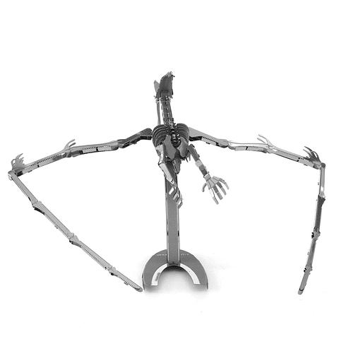 Esqueleto de Pteranodon
