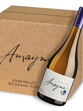Amayna Sauvignon Blanc 2020 | Caja 6 bot.