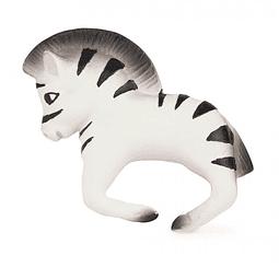 Zoe, the zebra