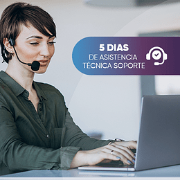 5 days of technical assistance support