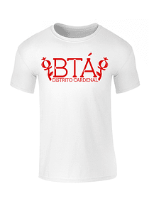Camiseta hombre - BTA DC
