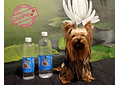 Antibacterial para mascotas