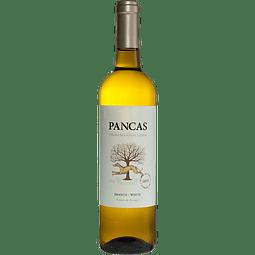 Pancas Branco 2019