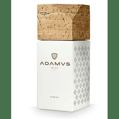 Gin Adamus