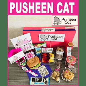 Desayuno Sorpresa Pusheen Cat