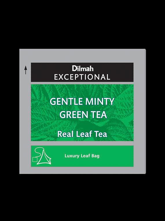 DILMAH EXCEPTIONAL GENTLE MINTY GREEN TE - 50 Un.