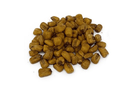 Maíz Tostado Salado - Image 1