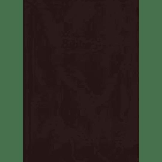 BÍBLIA – CASTANHA (CAPA DURA) DN53
